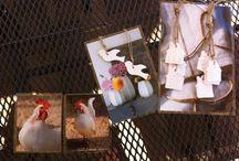 foto's lamineren combineren met klei!