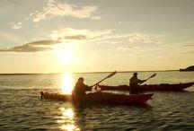 Kayaking in Churchill, Manitoba CANADA / Kayaking and Beluga Whale watching in Churchill, Manitoba CANADA