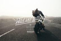 The Wild Is Calling: Arthetiks X Wayout