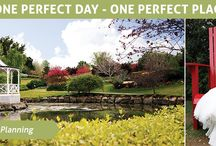 Hunter Valley Holiday / Places to visit on a Newcastle holiday