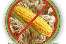 Corn and Gluten Free Foods