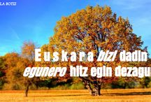 Euskararen eguna 2014 / Euskararen eguna 2014 #euskaljakintza10