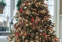 Christmas Trees / Christmas Trees  / by Cathy Terrell