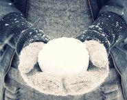 Winter Wonderland / by Danielle Neil Photography