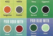 fashion color guidance