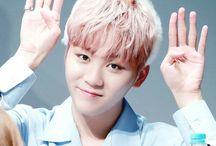 Seventeen seyung