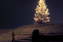 Fotky na vianočný pozdrav
