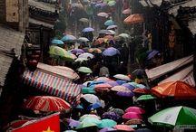 Paraguas / umbrellas