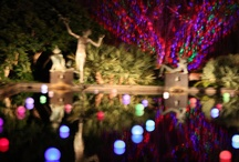 Brookgreen Gardens Events  / by Brookgreen Gardens