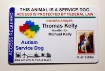 Autism Service dogs / I had no idea that I can have a service dog.