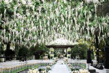 Lovely Weddings / by M C
