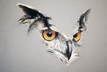 uilen tekenen/schilderen