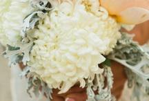 Weddings / It finally happened!!!! CJ decided to put a ring on it!! ❤️ / by Shalia Slayton