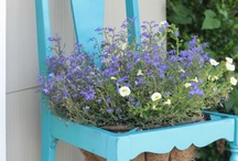 ideas on the flowerbed / pomysły na kwietnik