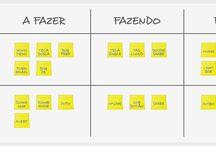 Organização Empresas