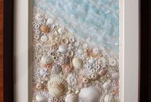 İdeas of sea shells