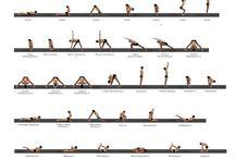 #yoga #yogi #yogu #yoge #yogo
