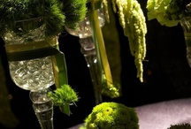 Organic, Green Wedding