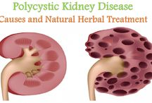 Natural Herbs For Kidney Problem
