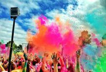 Holi / Poudre Holi pour la fête des couleurs