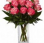 """Send flowers to Amritsar / Let your senses be mesmerized and bewitched by the exquisiteness of """"Charming Beauty."""" The implausible flower represents unmatched beauty and elegance at its best. http://www.onlinedelivery.in/flowers-delivery-in-amritsar.aspx"""