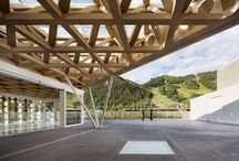 timber canopy-roof
