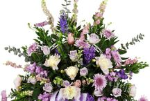 Sympathy and Funeral Gifts / All gifts delivery is free and sanctification grantee.  http://www.purplerose.ca/mississauga-florist/sympathy-and-funeral#.U1Z18qJudH0
