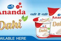 Ananda Dahi / Ananda Dahi is a tasty and creamy, which gives you the taste of homemade dahi without the hassles of preparing dahi at home.