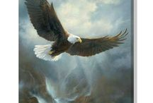 Wildlife Art / Amazing paintings of America's wildlife