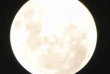 Luna en perigeo 2012 desde Argentina y el mundo / by Rosa Quintana
