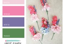 Kleuren / Kleurencombinatisch
