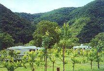Moezel campings