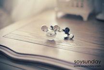 soysunday / 소이썬데이 사진 페이지