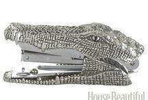 gators / by kitty clotheshorse