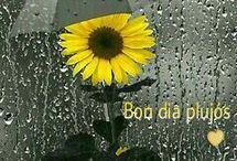 buen día con lluvia