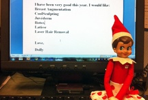 Dolly's Davis Plastic Surgery Adventures / Santa sent Davis Plastic Surgery an Elf this year!  Dolly arrived December 1st and will hopefully report our good behavior back to the big man.   / by Davis & Pyle Plastic Surgery