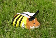 Halloween Costumes for Guinea Pigs!