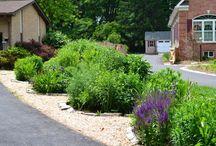 Great Gardening Articles