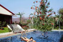 """""""Pool Yule"""" / Christmas time by the POOL!"""
