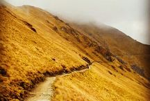 Paths & Trails