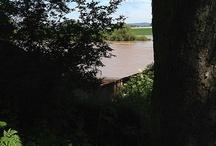 Hochwasser Neckar 2013 / Hier die Bilder die ich am Sonntag den 02.06.13 am Neckar gemacht habe