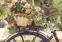 Bike Gardens