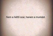0o0 / Humor