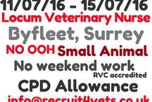 Veterinary Nurse Jobs / #vetnurse #jobs through out the UK