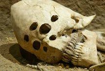strange skulls and bones