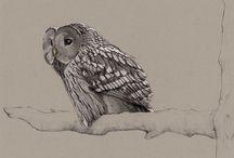 Art Inspiration - Drawing