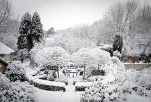 Gardens chale