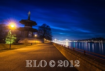 Nightscapes by ELO