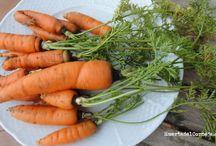 La zanahoria, una fuente de salud
