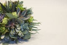 BRIDE / Bridal bouquet inspiration. This board is a mixture of our designs and other floral designers.